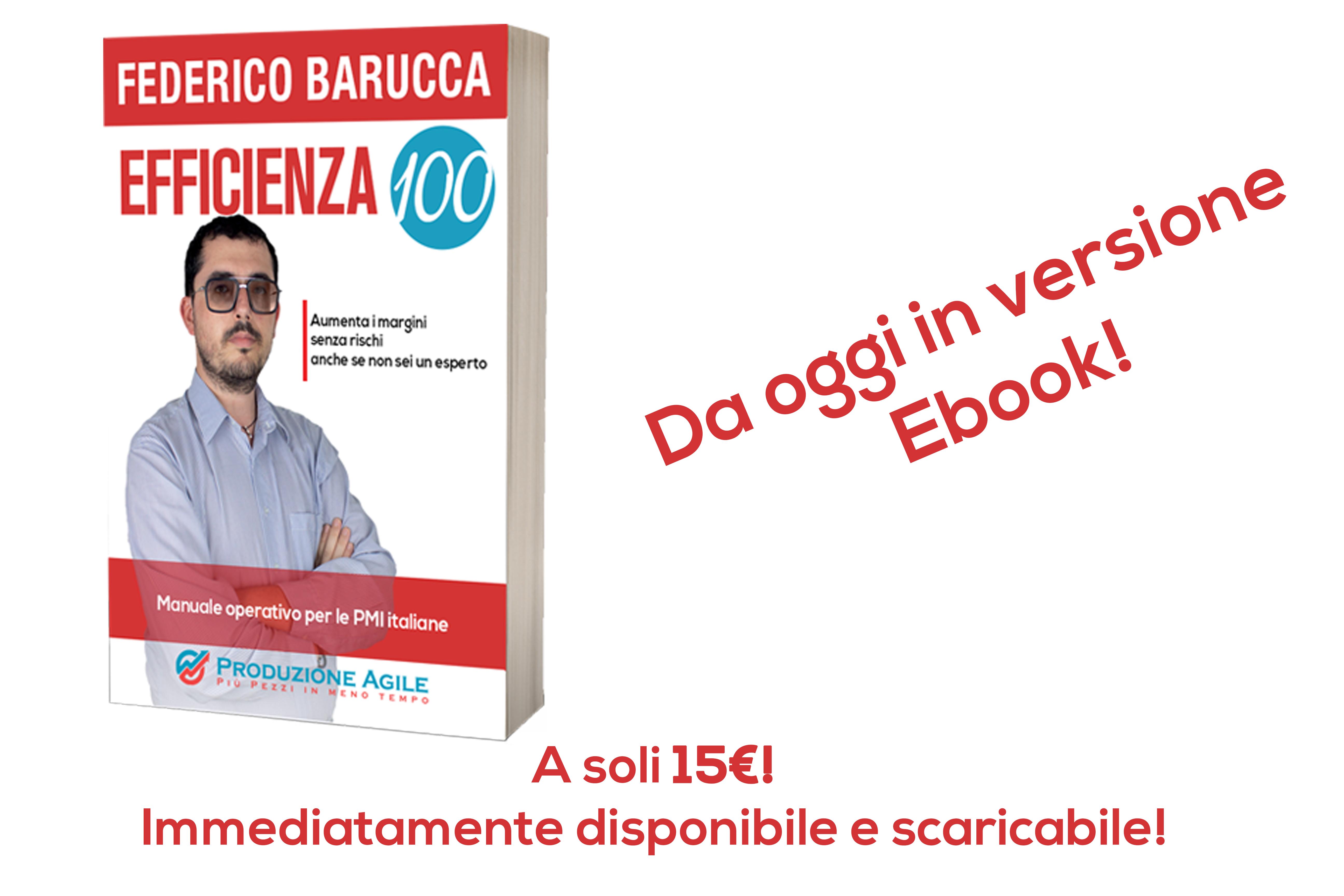 Libro Efficienza 100